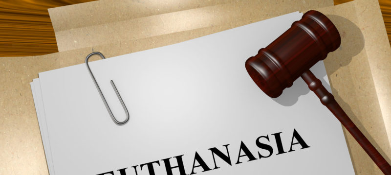 47834157 – render illustration of euthanasia title on legal documents