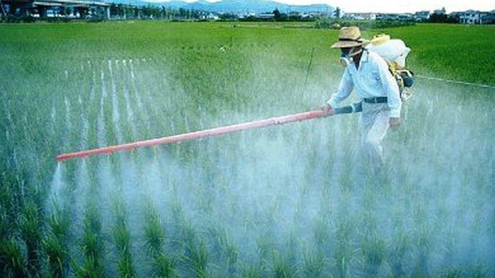 Αυστηρότερη η Ευρωπαϊκή Ένωση στην επιτρεψιμότητα των φυτοφαρμάκων σε σχέση με τις ΗΠΑ.
