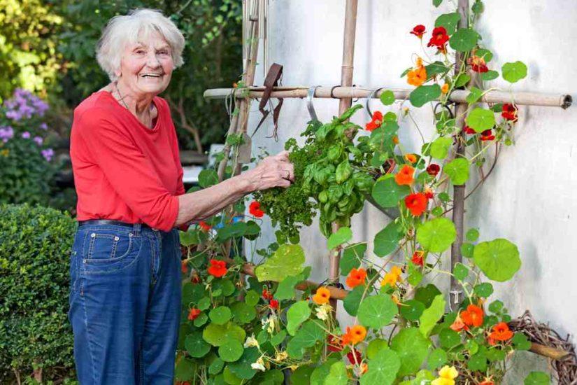 Ελαφρά δραστηριότητα για τους ηλικιωμένους