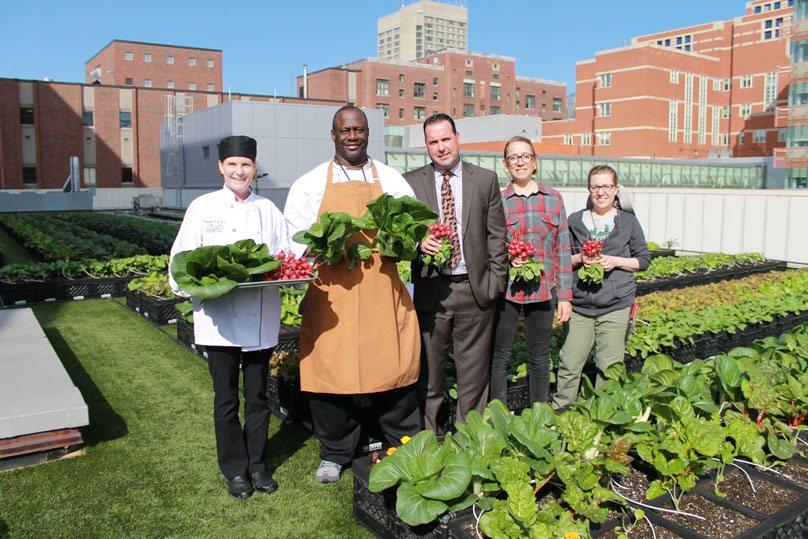 Εθελοντές καλλιεργούν φρέσκα τρόφιμα στην ταράτσα νοσοκομείου