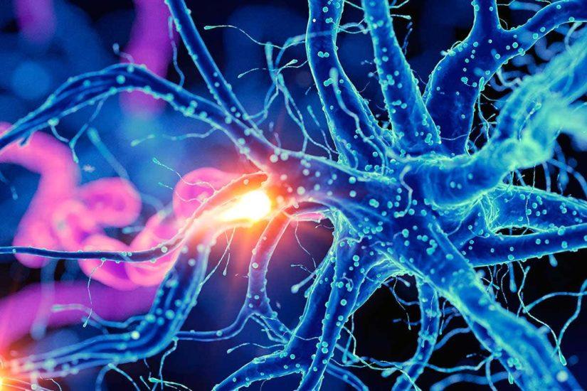 Οι πρώτοι στον κόσμο τεχνητοί νευρώνες