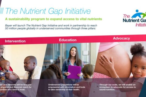 Overview of The Nutrient Gap Initiative
