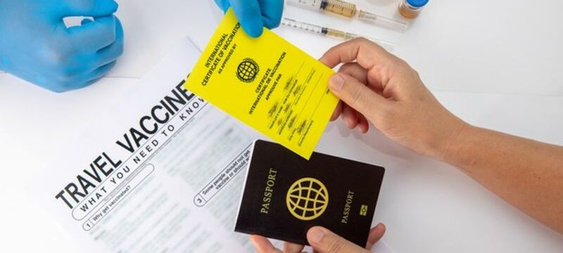 get-international-certificate-vaccination-before-travel_176124-778