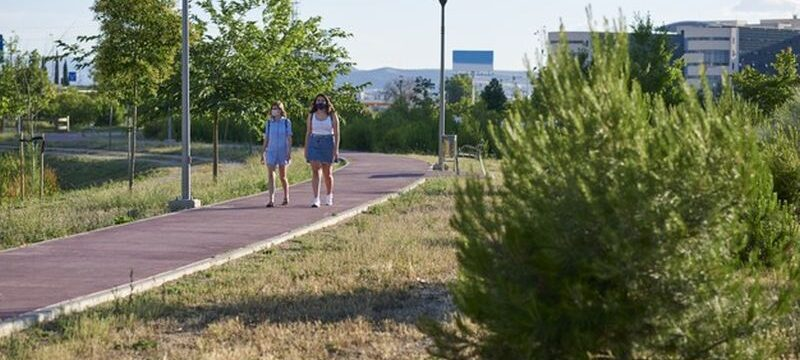 two-friends-take-walk-with-covid19-mask-they-walk-city-park-sunny-summer-day_230254-127