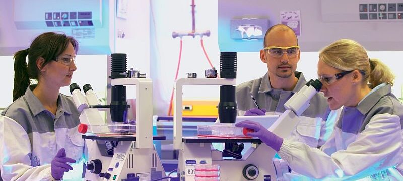 researchers_exam_cell_cultures_1