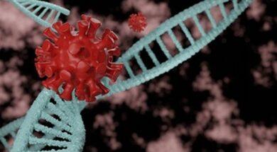 dna-antibodies-attacking-coronavirus-covid-19-as-dna-concept-3d-illustration_334978-180